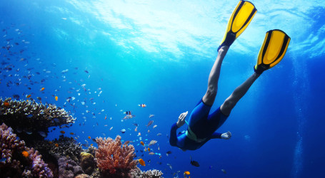Ten best diving adventures